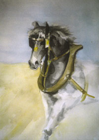 cheval ((50x70)