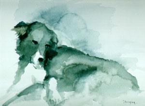 chien2 (50x70)