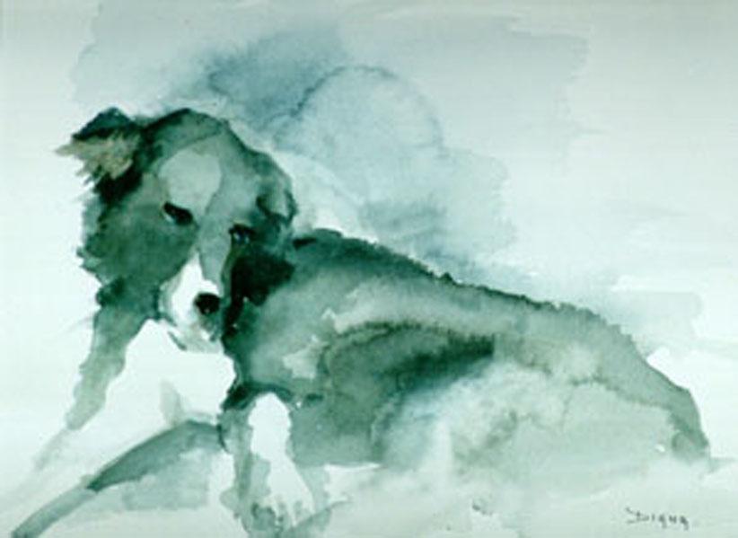 chien2 (50x70).jpgbis