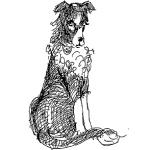 chien_sm